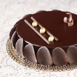 Chocolate-Praline Entremet