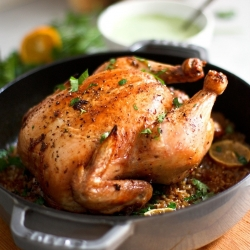 Roasted Harissa Chicken