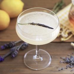Lavender Bee's Knees
