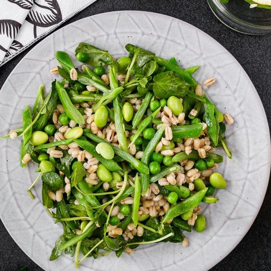Spring greens and barley salad